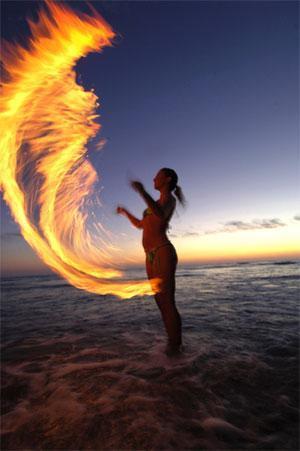 wings_of_fire_1183474503.jpg